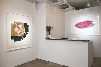 Linda Lindroth - Recent Disturbances, installation view