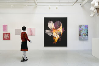 Flaming June VII (Flaming Creatures), installation view
