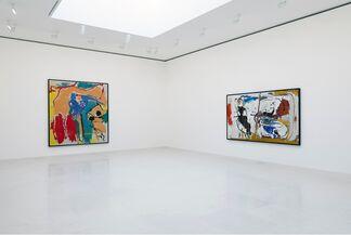 Helen Frankenthaler: After Abstract Expressionism, 1959–1962, installation view