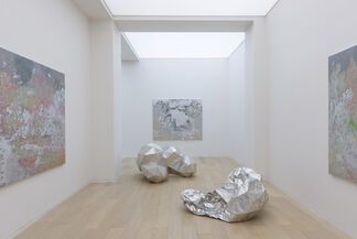 Toby Ziegler, installation view