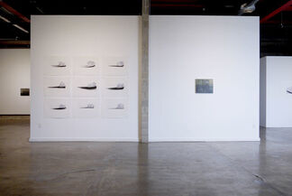 City of Queen Anne's Lace, installation view