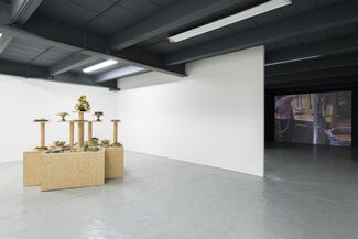 Food for Thought, installation view