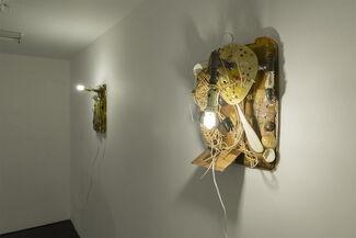 Crawlers, installation view