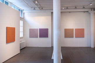 Mariano Ferrante : Studies, installation view