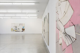 Sally Ross | Painting Piece-By-Piece, installation view