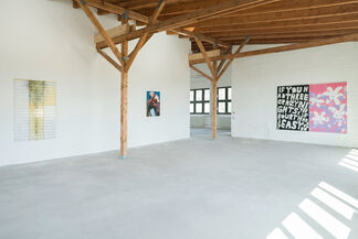 Mixed Pickles 8, installation view