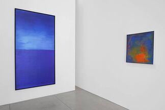 Joe Goode, installation view