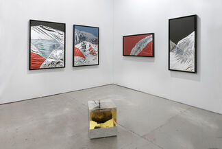 Marie Kirkegaard Gallery at Art Los Angeles Contemporary 2018, installation view