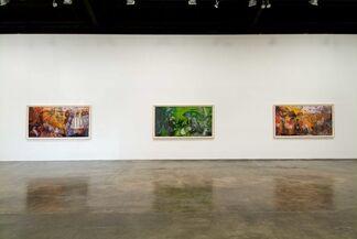 Dinh Q. Lê: A Quagmire This Time, installation view