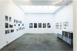 Johannes Schwartz: CUCKOO, installation view