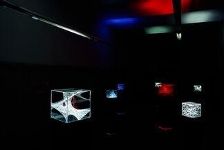 N2 Galería at Art16, installation view