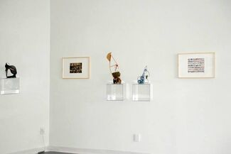 """Shane Drinkwater, Suzanne Goldenberg: """"The Lost, The Found and The Superfluous"""", installation view"""