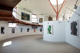 Franz Grabmayr, installation view