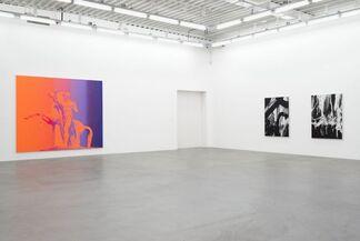 Richard Phillips, installation view