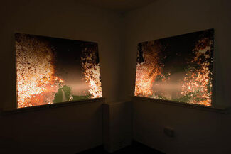 Hangjun Lee: Nebula Rising, installation view