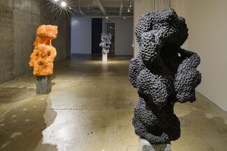 Nicolas Lobo - D.O.W., installation view