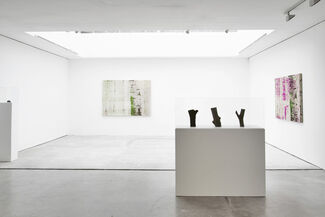 Shezad Dawood   Wolf Panel, installation view