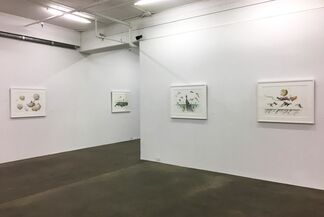 Paul Morstad - The Sea is a Satellite, installation view
