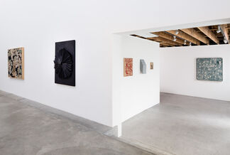 Complex Systems of Communication, installation view