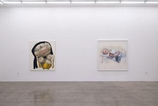 Figure / Landscape, installation view