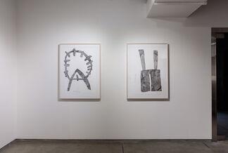 Gunther Schützenhöfer: As I See It, installation view