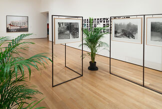 Ocean of Images: New Photography 2015, installation view