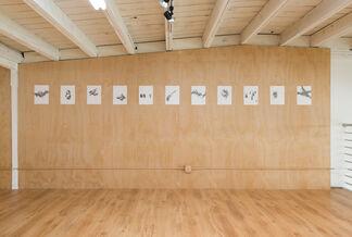 Manifestos, installation view
