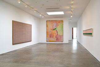 Openness and Clarity: Color Field Works from the 1960s and 1970s, installation view