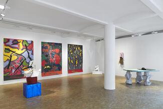 Bill Woodrow: Fata Morgana, Crocker Land and the odd Superior Mirage, installation view