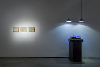 Carl Cheng: Nature is Everything - Everything is Nature, installation view