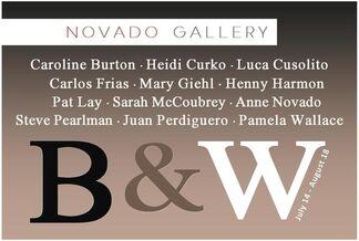 """B&W"", installation view"