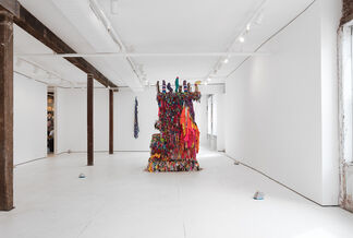 Utopia Muscle, installation view