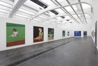 Wang Xingwei, installation view