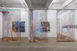 Mother Tongue, installation view
