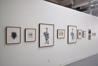 Do You See This Too?, installation view