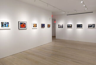 Primordial Language: Small Works by William Scharf, installation view
