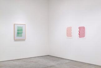 "Brad Tucker - ""Wobbles"", installation view"