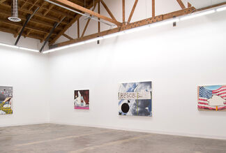 Lisa Adams: America The Beautiful, installation view