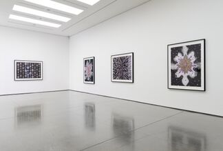 Fred Tomaselli: Paper, installation view