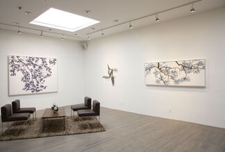 Chasing the Sky, installation view