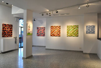 Camouflages + Monksy, installation view