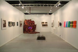 Parasite at Contemporary Istanbul 2015, installation view