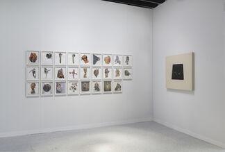 Ana Mas Projects at VOLTA NY 2017, installation view