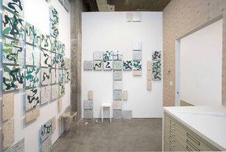 In the Project Room: Brice Brown, installation view