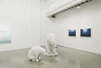 PERNiCiEM at Alison Milne Gallery, installation view