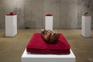 Laurel Roth: Flight of the Dodo, installation view
