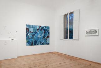 Tropico - Tellas solo show, installation view