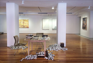 Alluvial Constructs, installation view