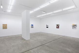 Leslie Wayne: Free Experience, installation view