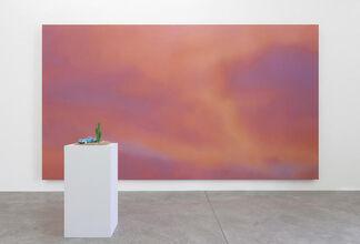 Alex Israel 'Summer', installation view